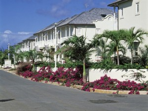 houses for rent in barbados